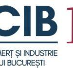 Camera de Comerț și Industrie București, condamnată definitiv să plătească daune materiale de milioane de euro în cel mai recent dosar Dimitriu