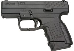Judecătorii au decis să-i confiște avocatului Remus Borza un pistol de autoapărare marca Walther